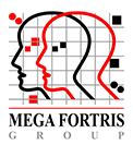 Mega Fortris South Africa